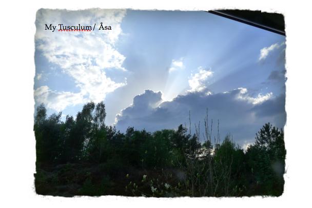 Skärmavbild 2013-05-17 kl. 22.01.45