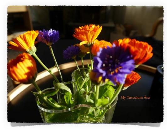 Skärmavbild 2014-10-14 kl. 20.43.37